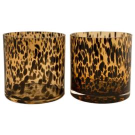 VAZEN | Windlicht Cheetah