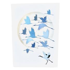 Kaart Blue Cranes