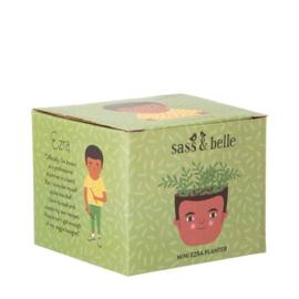 Sass & Belle Pot Ezra Mini