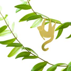 Planthanger Lemur