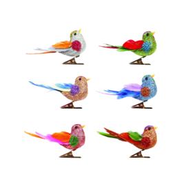 Vogeltjes Paradijs