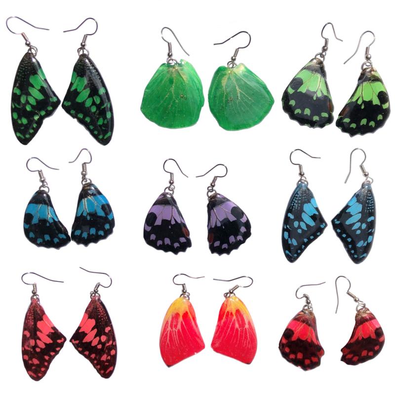 Vlinderoorbellen Color