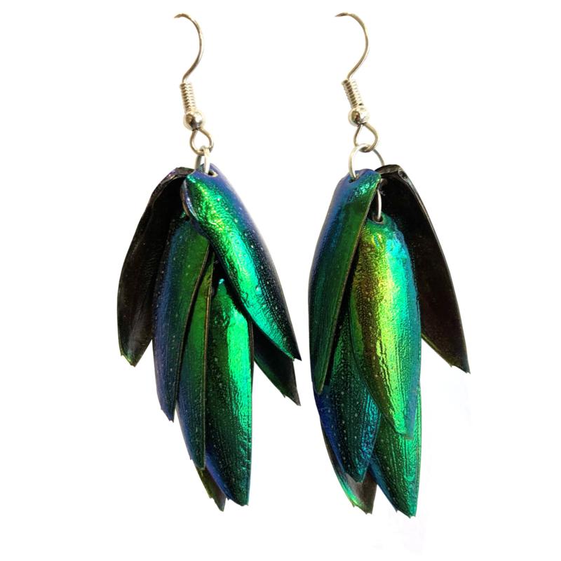 Oorbellen Beetle Wings