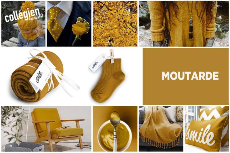 Broekkousen - Moutarde De Dijon