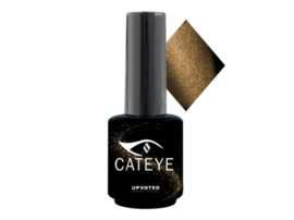 Upvoted #001 CatEye Maine Coon