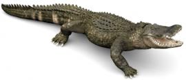 alligator 50254