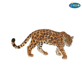 jaguar 50094
