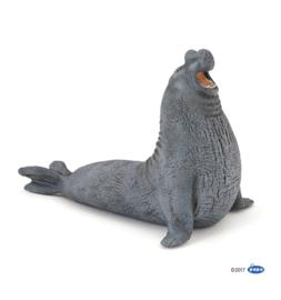 zeeolifant 56032
