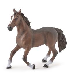 bruin paard XL 50232