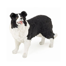 border collie 54008