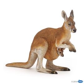 kangoeroe 50188
