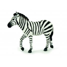 zebra hengst 50249