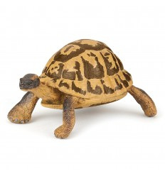 schildpad 50264