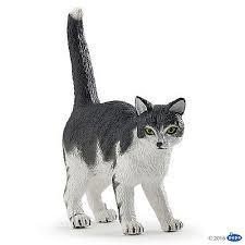 chat noir et blanc 54041