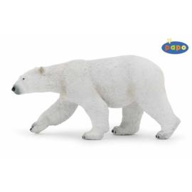 ijsbeer 50142