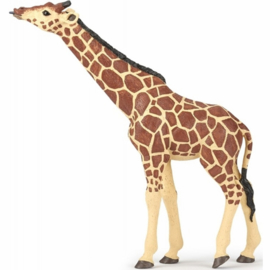 giraf 50236