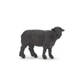 mouton noir 51167