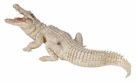 krokodil wit baby 50141