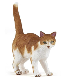 chat roux 54031