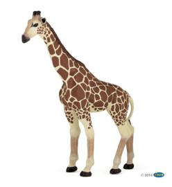 giraf 50096