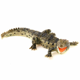 krokodil baby 50137
