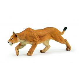 leeuwin jagend 50251