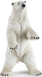 ijsbeer staand 50172
