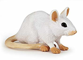 souris blanche 50222
