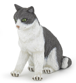 chat assise 54033