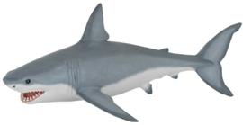 witte haai 56002