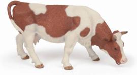 vache Simmental broutant 51147