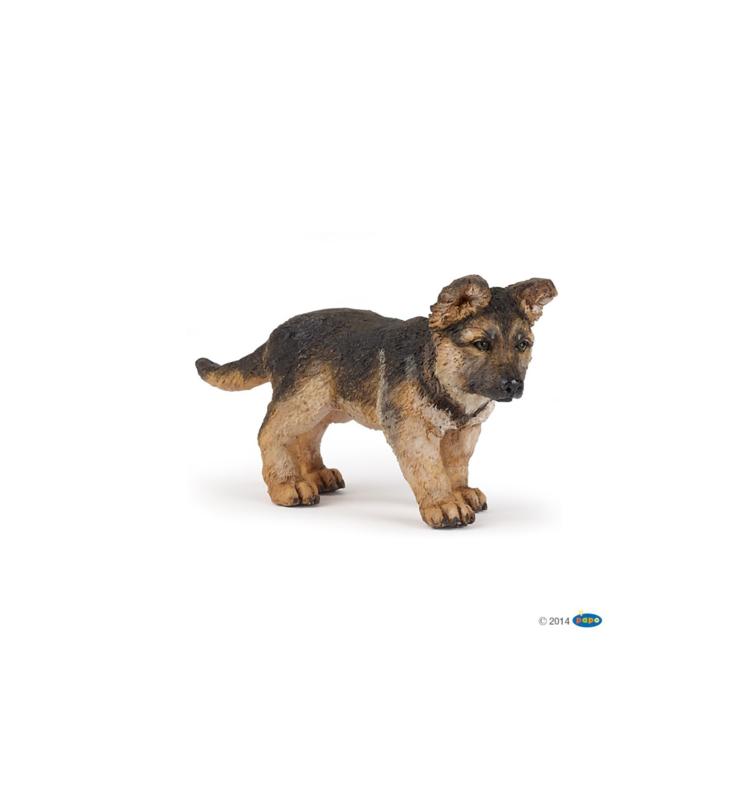 Duitse herder  pup 54039