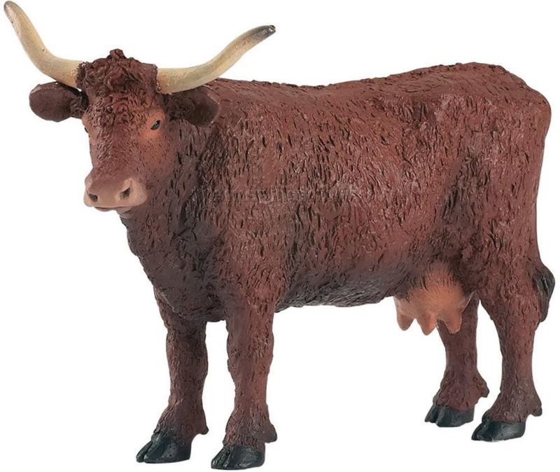 PAPO 51042 Salers Vache