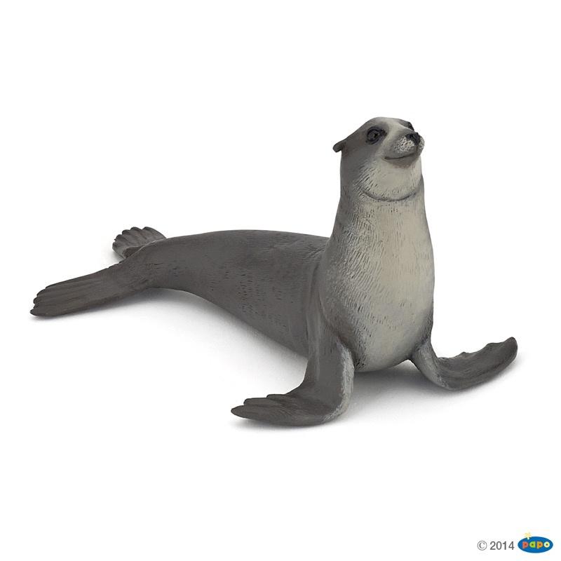 zeeleeuw 56025