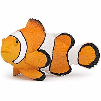 drieband anemoonvis 56023
