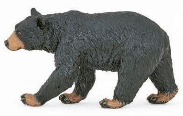 zwarte beer 50271