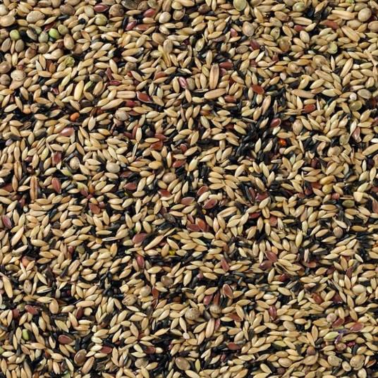 Deli Nature 80 kanarie kweek zonder raapzaad 5kg (2 x 2,5kg)
