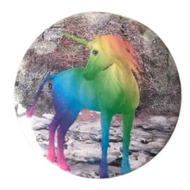 Eenhoorn Regenboog broche / button