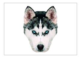 Ansichtkaart hond A6 10 stuks (€7,52 ex btw)