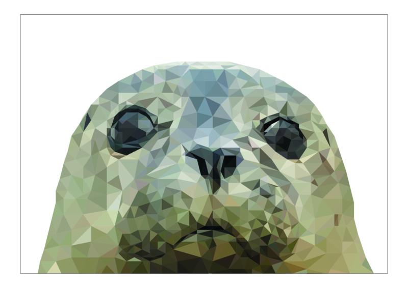 Ansichtkaart zeehond A6