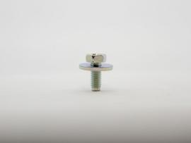 Bout met ring M6x15
