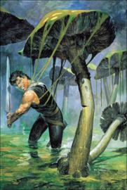Storm poster • Mushroom