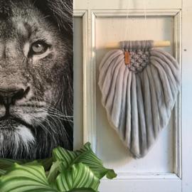 LION wool