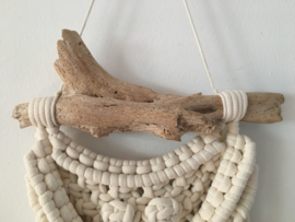 B E A C H  small driftwood