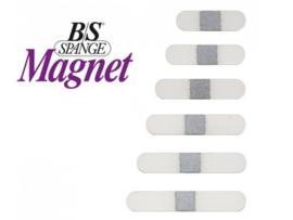 B/S Magnet Spange