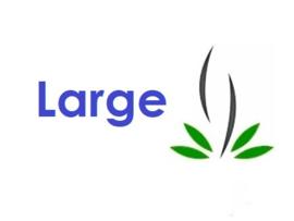 Maten - Large