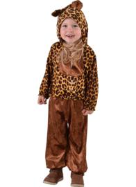 Baby tijgertje