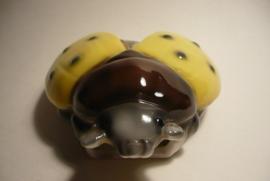 Lieveheersbeestje, voor aan de wand