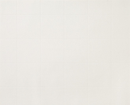 D-C-Wall® Ceramics Caserta White 67,5CM X 4M