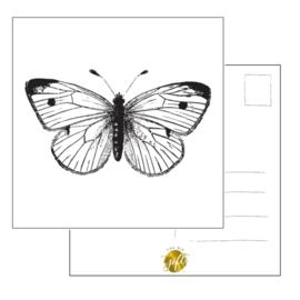 Woonkaart - vlinder